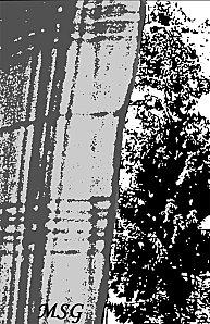Rideau fenêtre