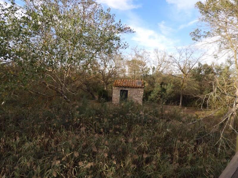 Le parc naturel d'Aiguamolls de l'Empordà