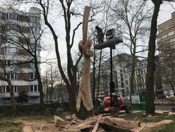 Square Vergote : promis à l'abattage, deux hêtres morts deviennent des œuvres d'art