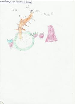 """Coloriages et dessins : la crevette des """"Animots Rigolos"""" - les Sons Voyelles"""
