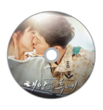 Descendants Of The Sun / 태양 의 후예