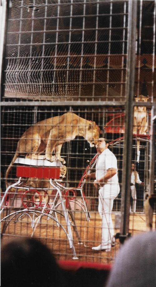 Yann Gruss au cirque Pinder Jean Richard ( archives Yvan Schadig)