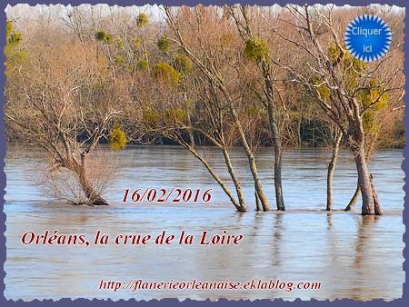 La Loire en crue (février 2016)