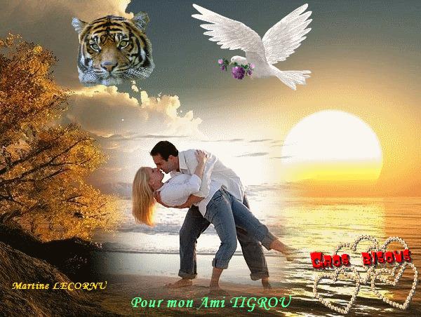 MA CREATION POUR MON AMI TIGROU (NICO)