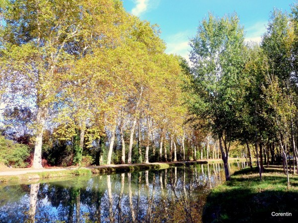 J06---Canal-du-Midi.JPG
