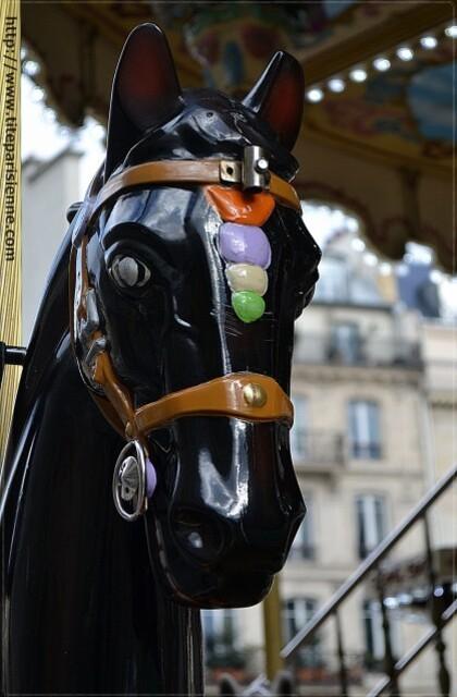 Les chevaux de l'Hôtel de Ville 3