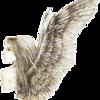 Ange croquis