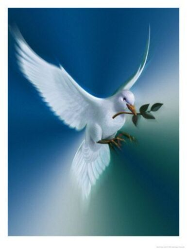 La Page de la Sagesse : Citation du Dalaï Lama sur la paix