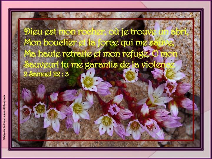 Dieu est mon rocher - 2 Samuel 22 : 3