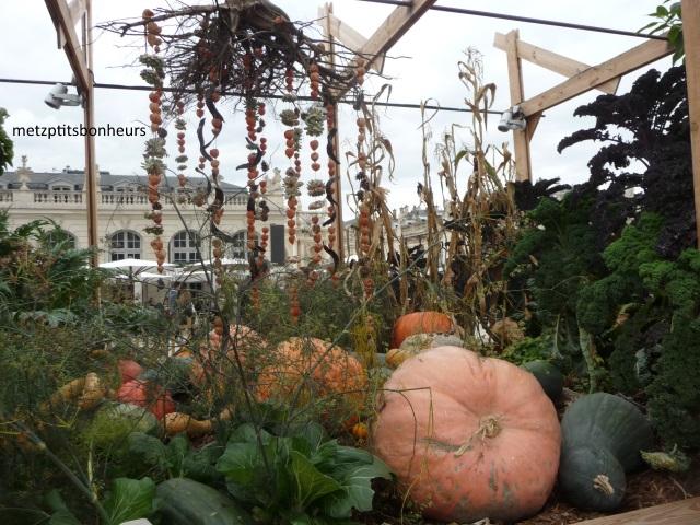Jardin éphémère de Nancy...