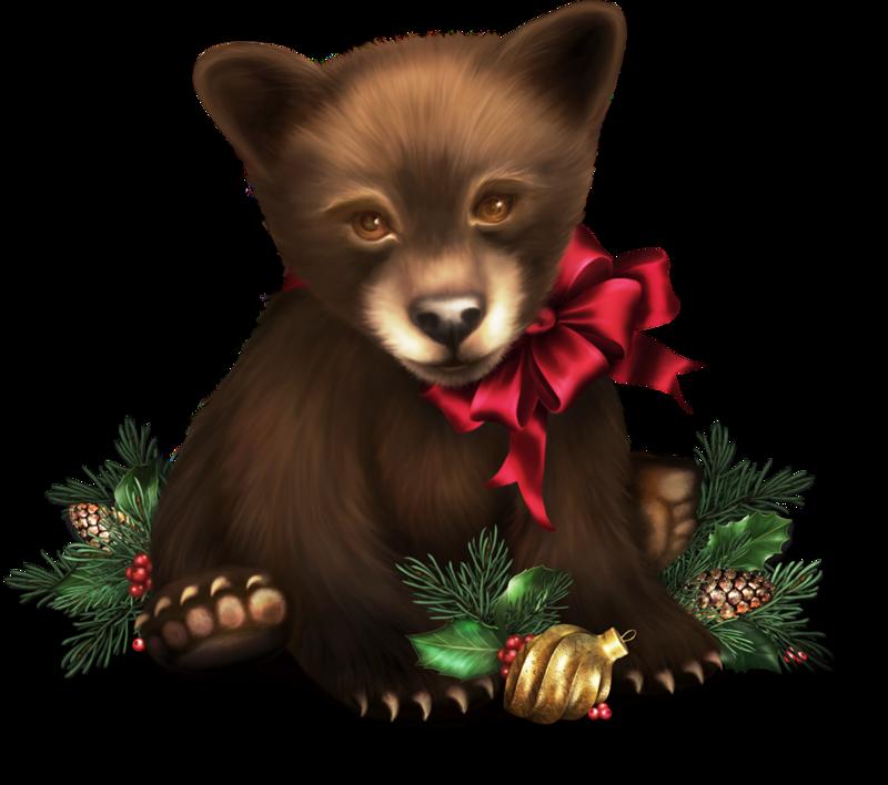 kit the christmas cub from jaguarwoman