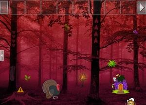 Jouer à Wild turkey fairyland escape
