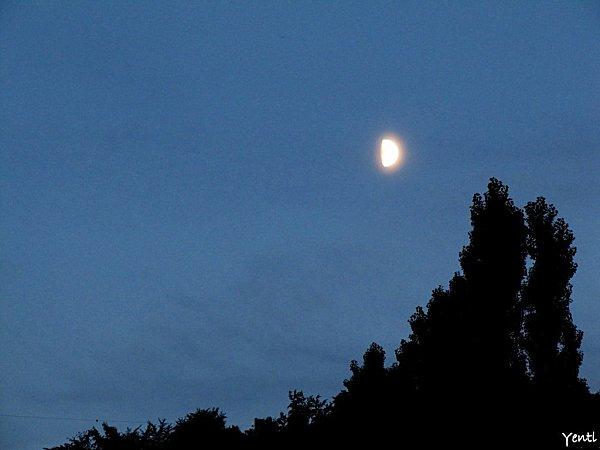 Lune été 2010