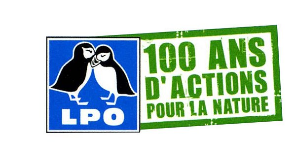 1.-Logo-centenaire1.jpg