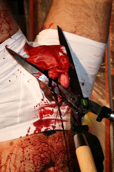 Critique de A Day of Violence de Darren Ward