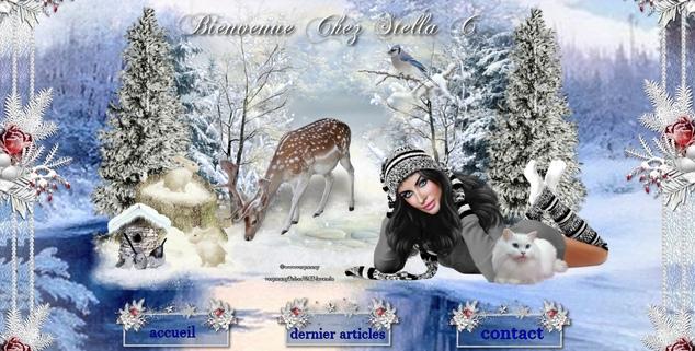 Kit hiver pour stella