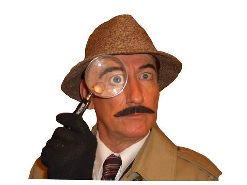 PINK PANTHER. The Ultimage Inspector Clouseau  (Humour)