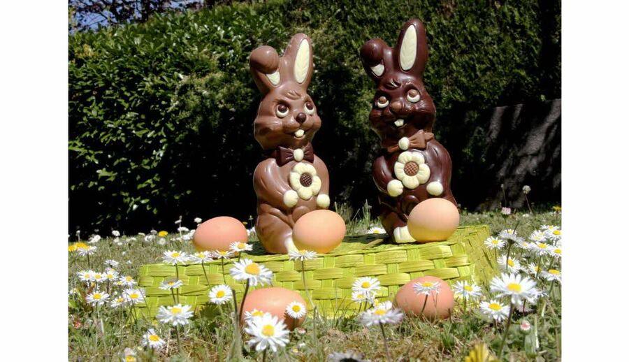 Très bon w.end de Pâques à tous