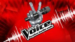 The Voice Kids  ( France )