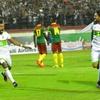 Dimanche 9.10.2016 Q.CM à Blida EN-Cameroun 1-1