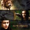 new_moon___twilight_saga_by_benynn.jpg