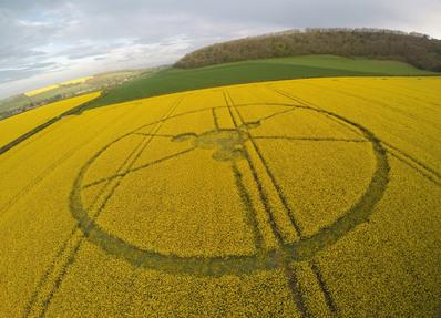 Crop circles 2014
