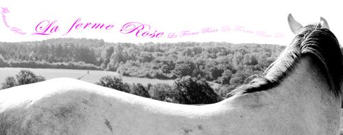 La Ferme Rose