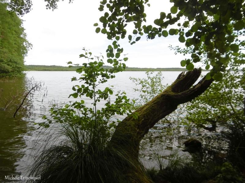 Une balade à la Pointe des Vergnes à SOUSTONS (40), le 25 mai....