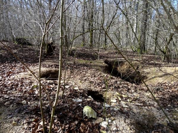A la recherche de la soue de Voulaines les Templiers