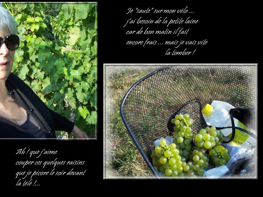On va couper du raisin blanc !