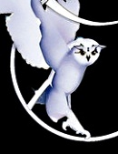 <IMG: Psygnosis owl>