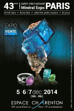 Salon International Minéraux Fossiles Pierres gemmes Bijoux 2014