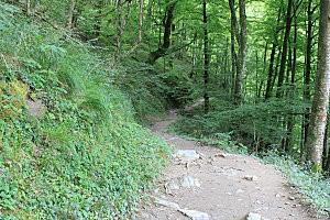 sentier d'Holzarte -18-