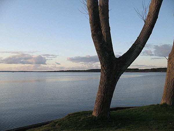 lac de parentis en born (landes)4