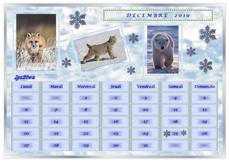 Calendrier Décembre 2010