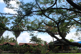 Costa Rica : proche de la nature