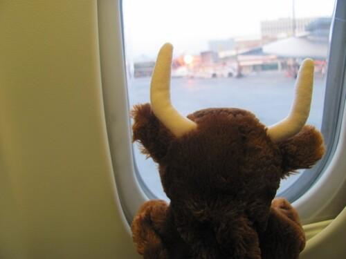 Mirabelle part en voyage
