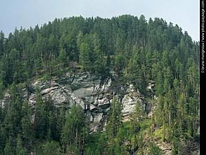 normal foret-falaise-montagne-autriche