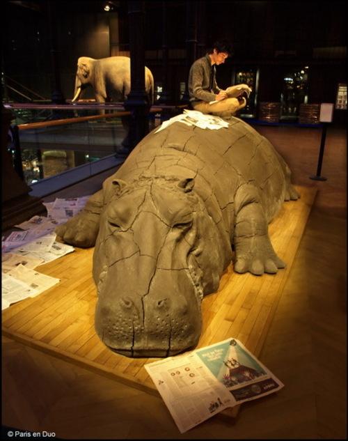 La Grande Galerie de l'Evolution - Musée d'Histoire Naturelle