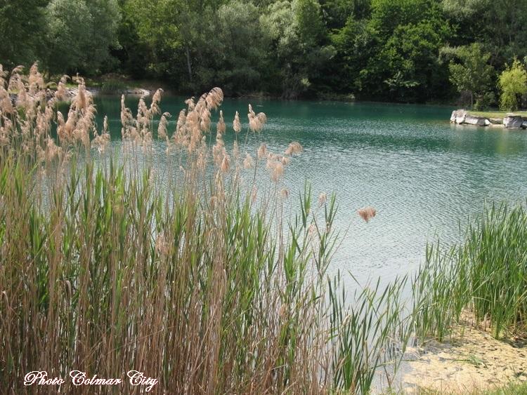Wolfgantzen (68) : Au bord de l'étang