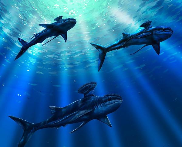 préhistoriques créatures-animaux-8