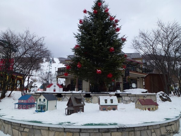 Station Mt Tremblant (12)