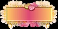 Roses pastel