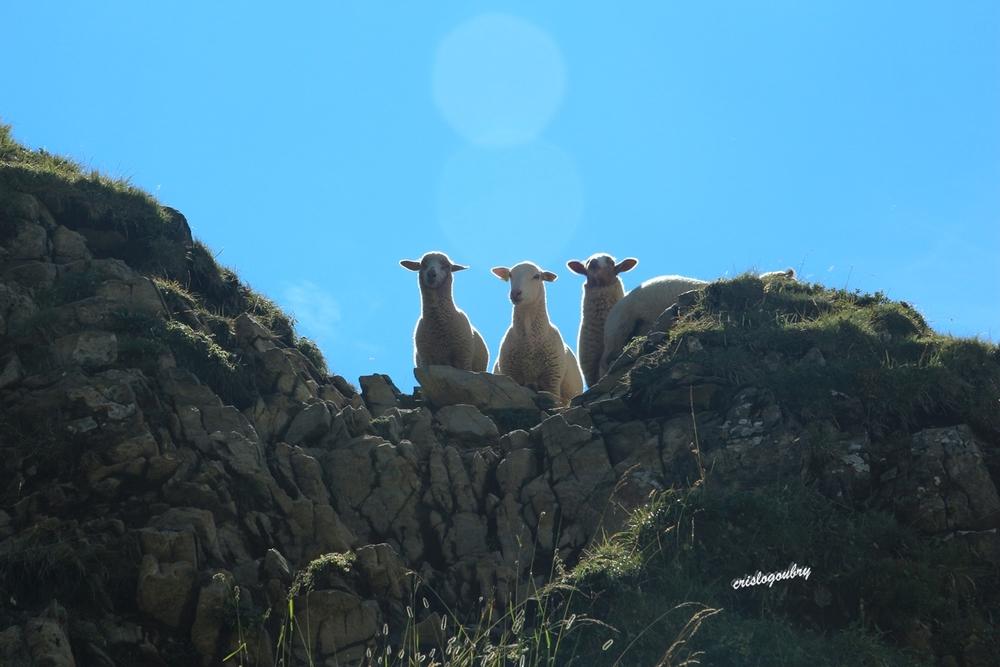 Rencontres Col de Balafrasse
