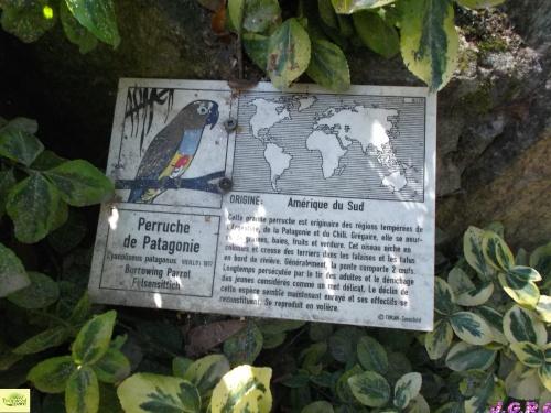 TROPICAL PARC DE SAINT JACUT  56   6/8