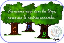 "Balade de blog en blog : devenez ""SAGE"" !"