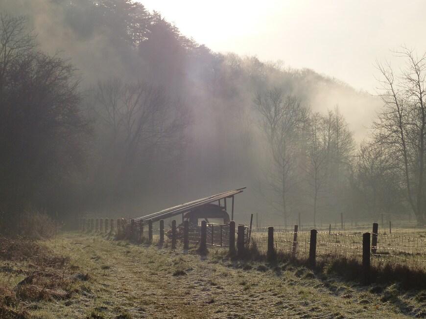 Dans le silence d'un matin d'hiver
