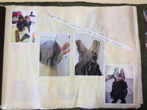 Projet Sydème : la chauve-souris... une aventure extraordinaire !