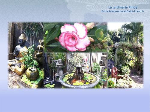 La jardinerie Pinoy