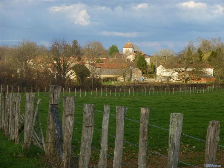 Au fil de ma balade vers Lussac,Charente.